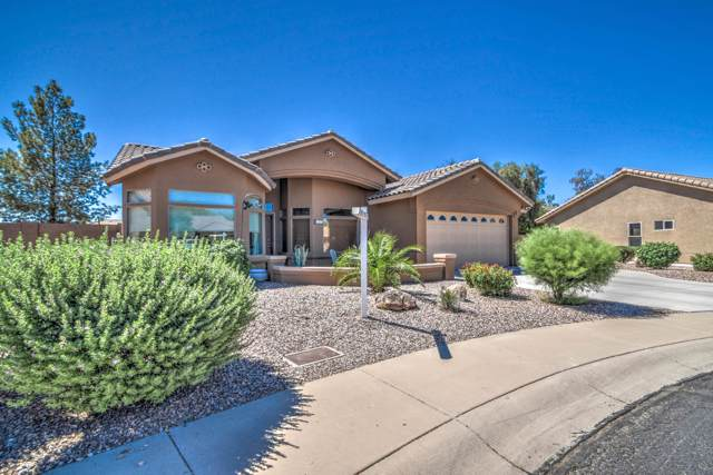 11241 E Lakeview Circle, Mesa, AZ 85209 (MLS #5953869) :: Brett Tanner Home Selling Team