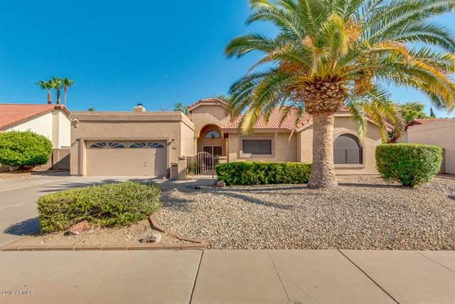 4161 W Orchid Lane, Chandler, AZ 85226 (MLS #5955020) :: Homehelper Consultants