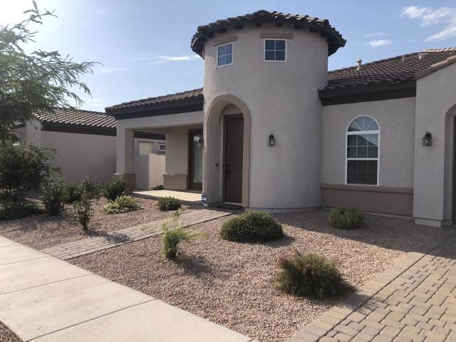 22264 E Pecan Lane, Queen Creek, AZ 85142 (MLS #5955526) :: Riddle Realty