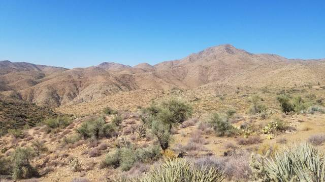 Lot 15 Diamond Hitch Road, Kingman, AZ 86401 (MLS #5957784) :: The Everest Team at eXp Realty