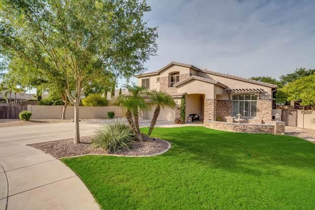 1756 E Cullumber Court, Gilbert, AZ 85234 (MLS #5958794) :: CC & Co. Real Estate Team