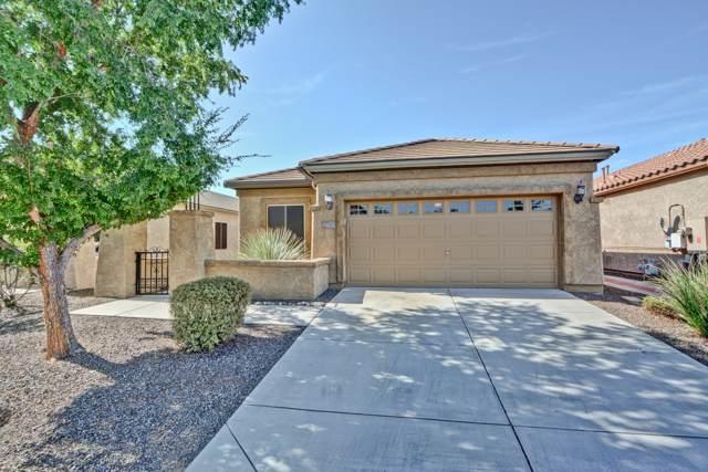 26241 W Behrend Drive, Buckeye, AZ 85396 (MLS #5959379) :: The Kenny Klaus Team