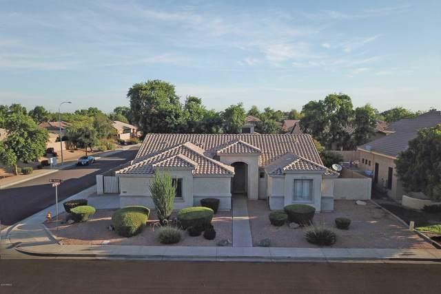 782 W Raven Drive, Chandler, AZ 85286 (MLS #5960311) :: CC & Co. Real Estate Team