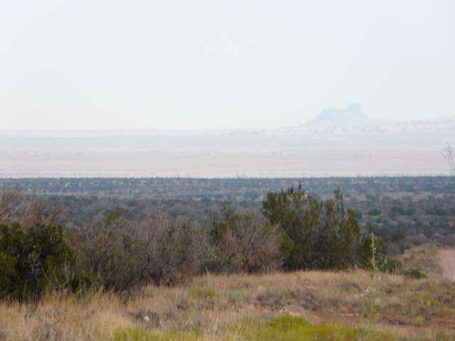 Lot 252 Chevelon Canyon Ranch, Heber, AZ 85928 (MLS #5962788) :: Lifestyle Partners Team