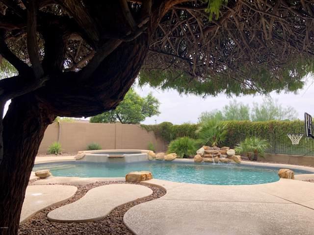 39918 N Majesty Trail, Anthem, AZ 85086 (MLS #5963395) :: The Daniel Montez Real Estate Group