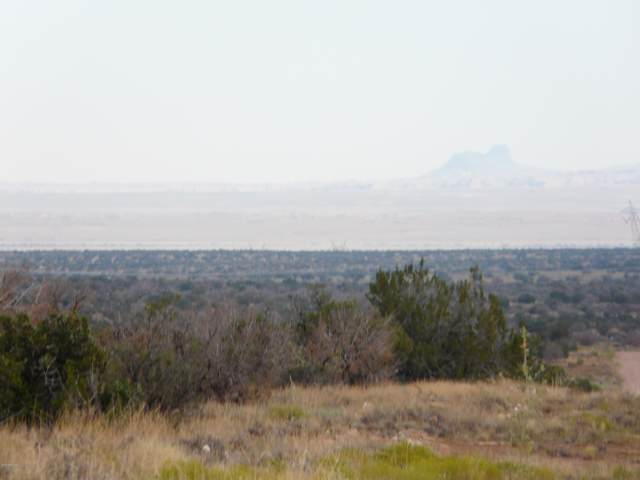 Lot 254 Ccr Unit 2, Heber, AZ 85928 (MLS #5963781) :: Lifestyle Partners Team