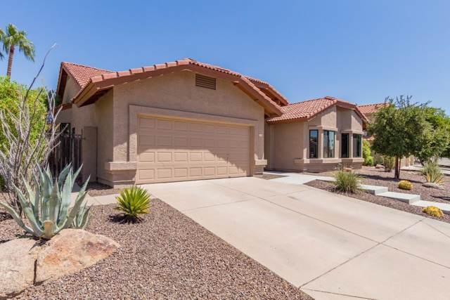 2748 E Mountain Sky Avenue, Phoenix, AZ 85048 (MLS #5963836) :: RE/MAX Excalibur