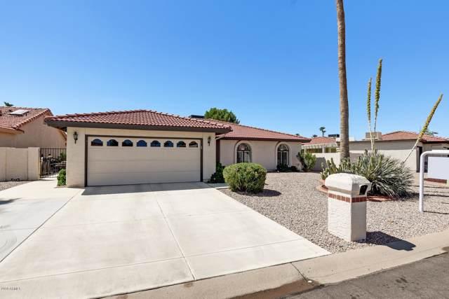 10309 E Silvertree Court, Sun Lakes, AZ 85248 (MLS #5963992) :: Yost Realty Group at RE/MAX Casa Grande