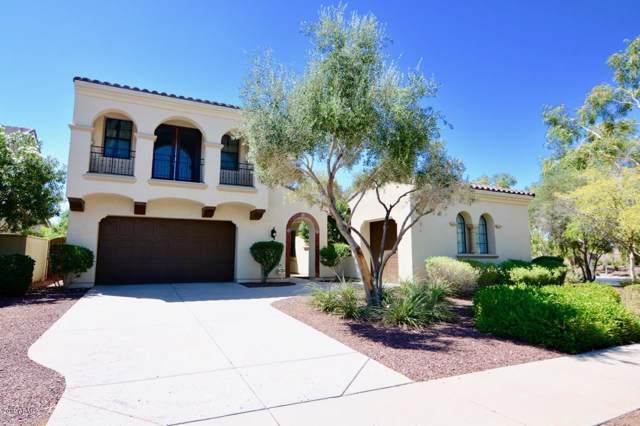 20919 W Western Drive, Buckeye, AZ 85396 (MLS #5964135) :: Yost Realty Group at RE/MAX Casa Grande