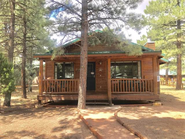 2689 Palomino Trail, Overgaard, AZ 85933 (MLS #5964474) :: Brett Tanner Home Selling Team