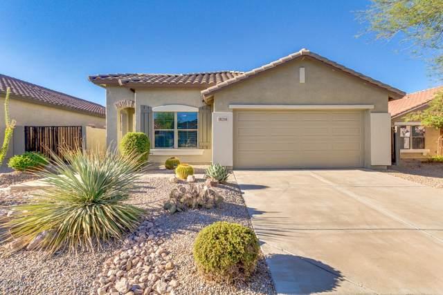 18258 E El Buho Pequeno, Gold Canyon, AZ 85118 (MLS #5964566) :: Riddle Realty Group - Keller Williams Arizona Realty