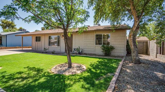 3309 E Helena Drive, Phoenix, AZ 85032 (MLS #5964587) :: Yost Realty Group at RE/MAX Casa Grande