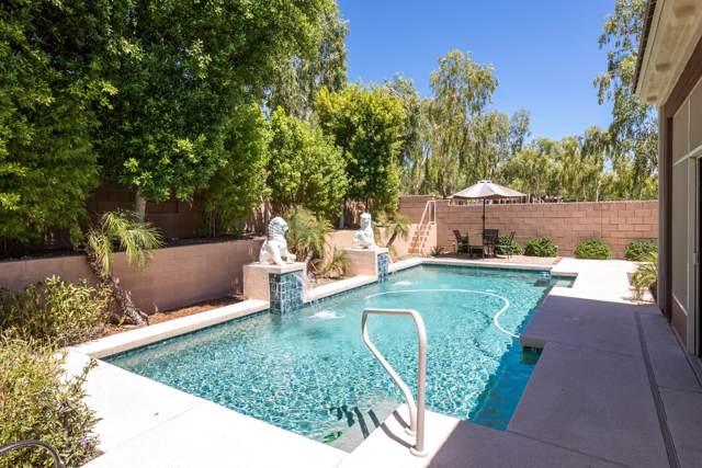 20890 W Wycliff Drive, Buckeye, AZ 85396 (MLS #5965190) :: Brett Tanner Home Selling Team