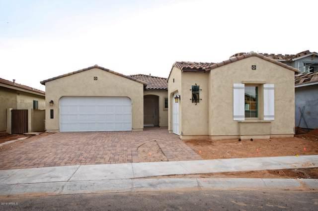 3836 E Megan Street, Gilbert, AZ 85295 (MLS #5965365) :: Revelation Real Estate