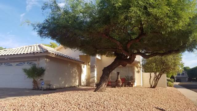 4318 E Mountain Vista Drive, Phoenix, AZ 85048 (MLS #5965604) :: CC & Co. Real Estate Team