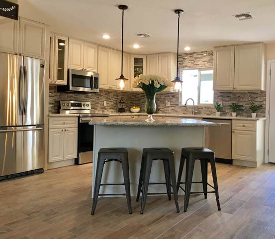 3537 E Evans Drive, Phoenix, AZ 85032 (MLS #5966068) :: Yost Realty Group at RE/MAX Casa Grande