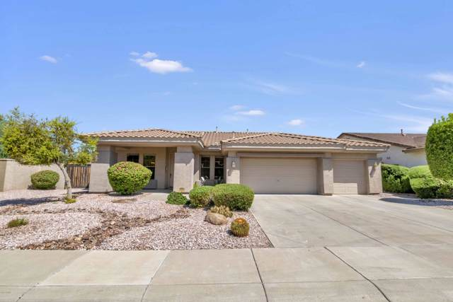 694 W Remington Drive, Chandler, AZ 85286 (MLS #5966938) :: CC & Co. Real Estate Team