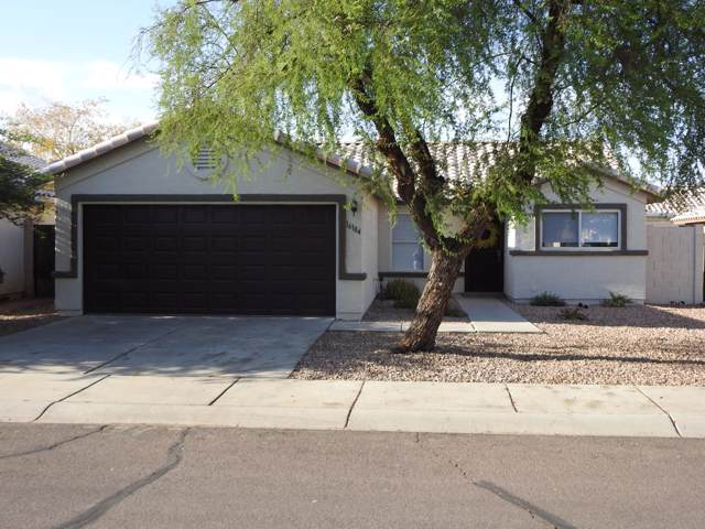 16184 W Mesquite Drive, Goodyear, AZ 85338 (MLS #5968628) :: Yost Realty Group at RE/MAX Casa Grande