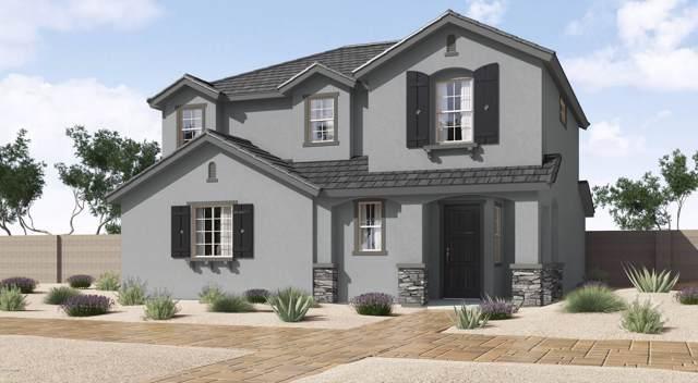 142 N 56TH Place, Mesa, AZ 85205 (MLS #5969822) :: CANAM Realty Group