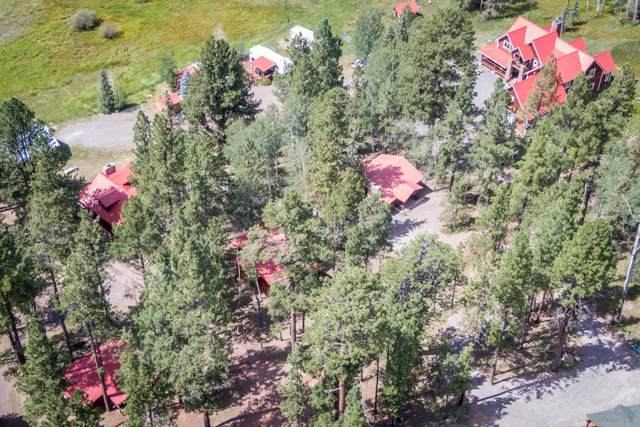 63 Co Rd 1121, Greer, AZ 85927 (MLS #5970543) :: Devor Real Estate Associates