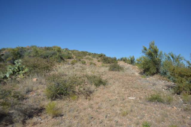 49 S Kirkland Peak Road, Kirkland, AZ 86332 (MLS #5973096) :: Riddle Realty Group - Keller Williams Arizona Realty