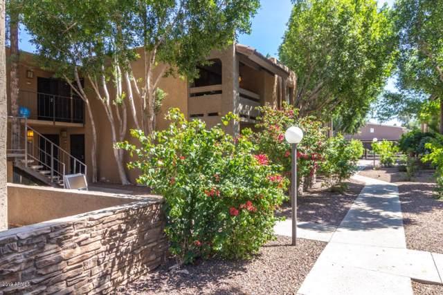3825 E Camelback Road #281, Phoenix, AZ 85018 (MLS #5973550) :: Brett Tanner Home Selling Team