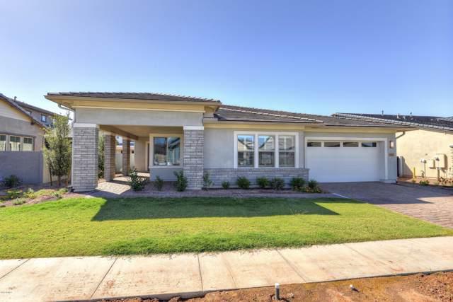 3731 E Arabian Drive, Gilbert, AZ 85296 (MLS #5974504) :: The Kenny Klaus Team