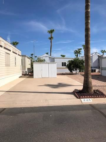 3710 S Goldfield Road, Apache Junction, AZ 85119 (MLS #5974699) :: Revelation Real Estate