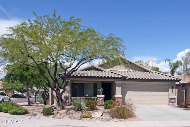 2440 W Oberlin Way, Phoenix, AZ 85085 (MLS #5977351) :: Yost Realty Group at RE/MAX Casa Grande