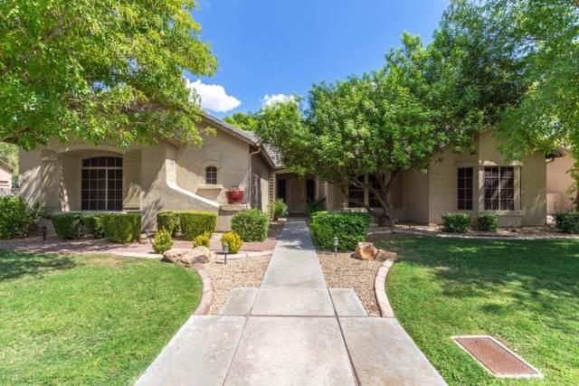 19511 N 41ST Lane, Glendale, AZ 85308 (MLS #5977941) :: Occasio Realty