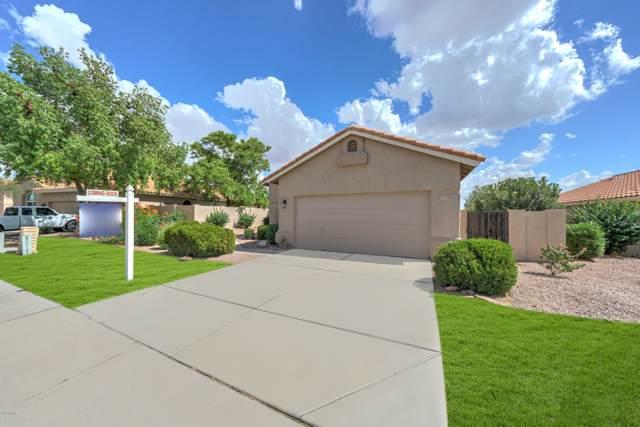 6409 E Redmont Drive, Mesa, AZ 85215 (MLS #5978190) :: Homehelper Consultants