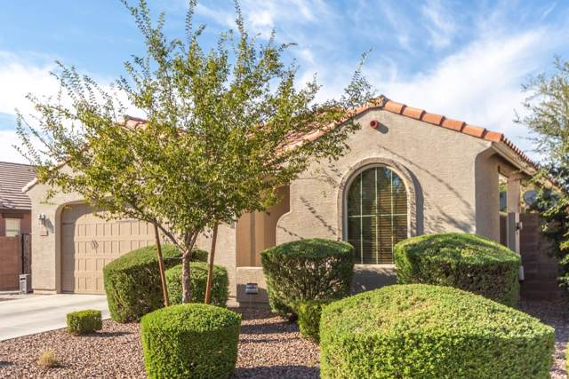 2008 E Stacey Road, Gilbert, AZ 85298 (MLS #5978331) :: The W Group