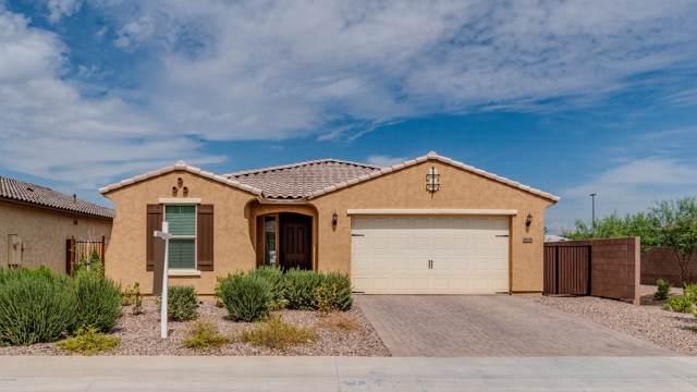 2676 E Augusta Avenue, Gilbert, AZ 85298 (MLS #5978400) :: BIG Helper Realty Group at EXP Realty