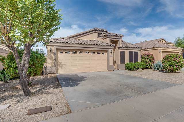1014 N 90TH Circle, Mesa, AZ 85207 (MLS #5979373) :: Homehelper Consultants