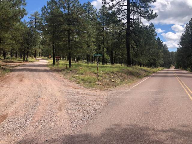 2142 E Creekside Circle, Payson, AZ 85541 (MLS #5979772) :: neXGen Real Estate