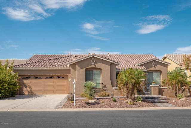 42444 W Blue Suede Shoes Lane, Maricopa, AZ 85138 (MLS #5979830) :: Yost Realty Group at RE/MAX Casa Grande