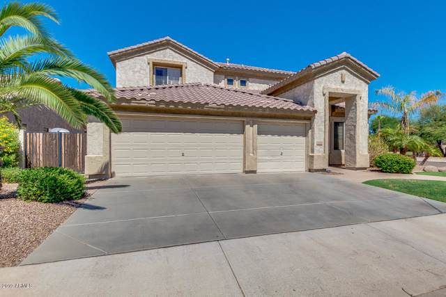 2460 E Binner Drive, Chandler, AZ 85225 (MLS #5980028) :: Lifestyle Partners Team