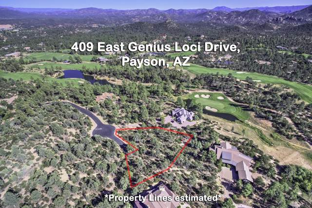 409 S Genius Loci, Payson, AZ 85541 (MLS #5982629) :: neXGen Real Estate