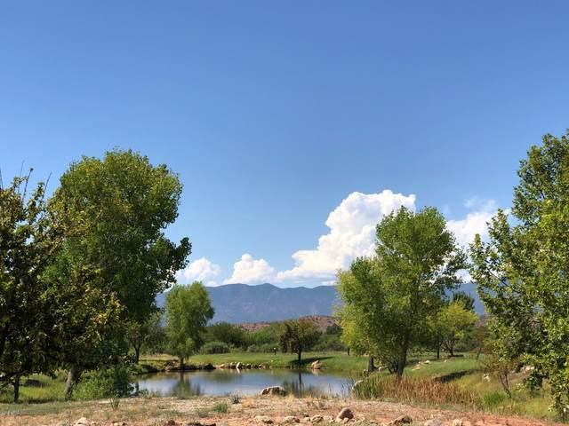 435 S Bonito Ranch Loop, Cornville, AZ 86325 (MLS #5982851) :: REMAX Professionals