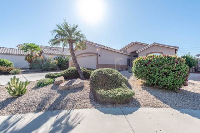 11029 W Almeria Road, Avondale, AZ 85392 (MLS #5986572) :: The Kenny Klaus Team
