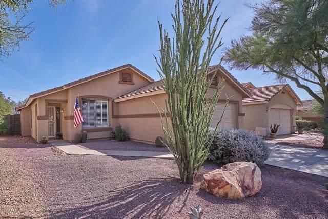 5065 S Louie Lamour Drive, Gold Canyon, AZ 85118 (MLS #5987107) :: The Kenny Klaus Team