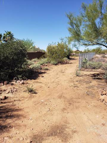 325 S Sunset Road, Apache Junction, AZ 85119 (MLS #5987948) :: Riddle Realty Group - Keller Williams Arizona Realty