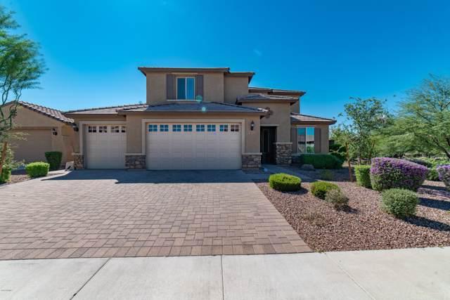 10755 W Whitehorn Way, Peoria, AZ 85383 (MLS #5989077) :: Occasio Realty