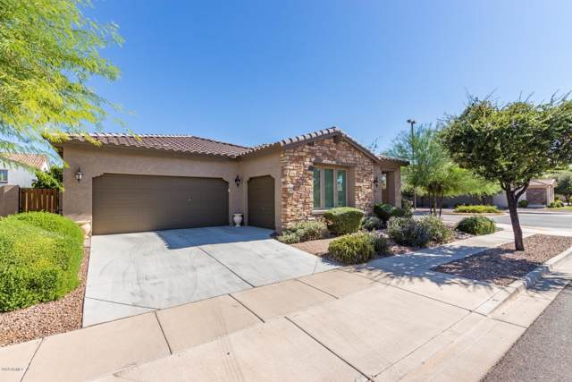 4580 E Waterman Street, Gilbert, AZ 85297 (MLS #5990380) :: Relevate | Phoenix