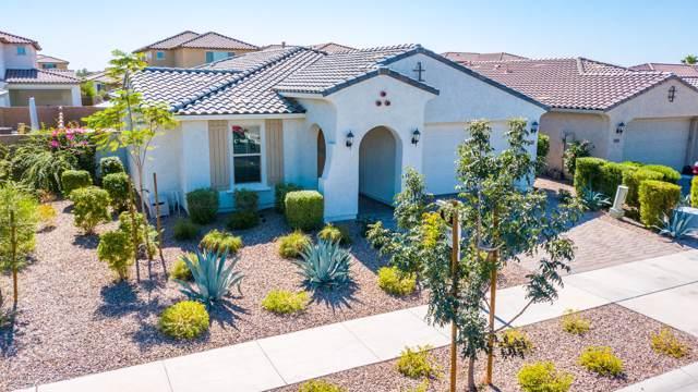 10421 E Sebring Avenue, Mesa, AZ 85212 (MLS #5990872) :: Revelation Real Estate