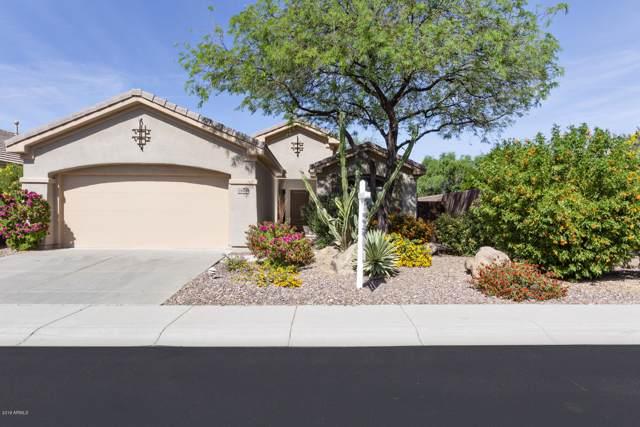 1626 W Dion Drive, Phoenix, AZ 85086 (MLS #5992860) :: Revelation Real Estate
