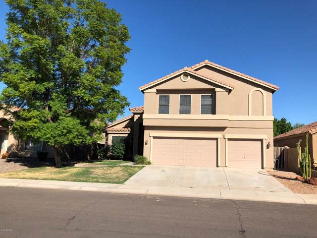 913 S Gardner Drive, Chandler, AZ 85224 (MLS #5992876) :: Power Realty Group Model Home Center