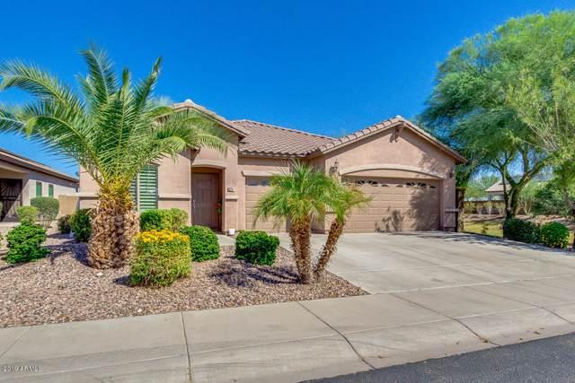 3491 N Balboa Drive, Florence, AZ 85132 (MLS #5993360) :: Conway Real Estate