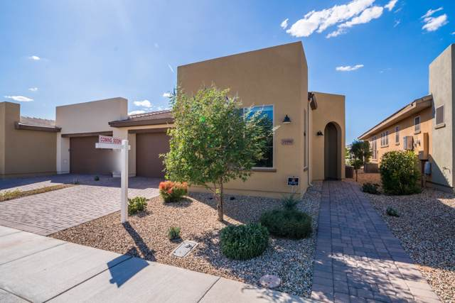 35990 N Zinnis Trail, San Tan Valley, AZ 85140 (MLS #5993960) :: The C4 Group