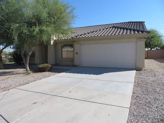 4641 N 123RD Drive, Avondale, AZ 85392 (MLS #5993981) :: Nate Martinez Team